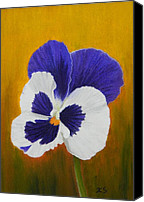 Still Life Pastels Canvas Prints - Pansy Canvas Print by Xenia Sease