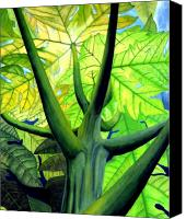 Reaching Canvas Prints - Papaya Tree Canvas Print by Kevin Smith