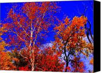 Indiana Autumn Digital Art Canvas Prints - Paprika Canvas Print by Ed Smith