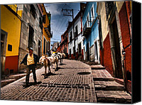 Burro Canvas Prints - Parade Canvas Print by Skip Hunt