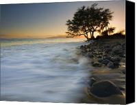 Lahaina Canvas Prints - PAradise Gold Canvas Print by Mike  Dawson