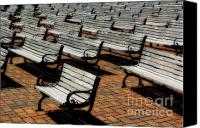 Park Benches Photo Canvas Prints - Park Benches Canvas Print by Perry Webster