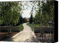 Patricia Schnepf Canvas Prints - Park Path Canvas Print by Patricia  Schnepf