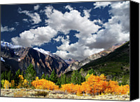 Sierra Canvas Prints - Parker Canyon Fall Colors Californias High Sierra Canvas Print by Bill Wight CA