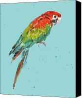 Tropical Bird Art Canvas Prints - Parrot - tropical bird Canvas Print by Alison Fennell
