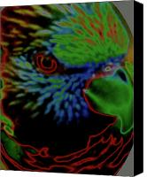 Living On The Edge Digital Art Canvas Prints - Parrot Bright Canvas Print by Debra     Vatalaro