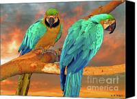 Parrots Canvas Prints - Parrots at Sunset Canvas Print by Michael Durst
