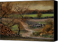 Farm Scenes Canvas Prints - Pastoral Bliss Canvas Print by Robin-lee Vieira