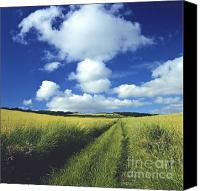 Scenic Roads Canvas Prints - Path in a countryside Canvas Print by Bernard Jaubert