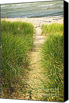 Walkway Canvas Prints - Path to beach Canvas Print by Elena Elisseeva
