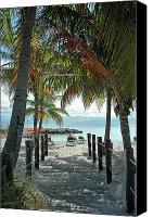 Palm Trees Canvas Prints - Path To Smathers Beach - Key West Canvas Print by Frank Mari