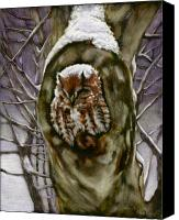 Storm Mixed Media Canvas Prints - Peace in the Storm - Eastern Screech Owl Canvas Print by Susan Donley