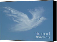 Sky Canvas Prints - Peace Canvas Print by Methune Hively