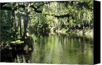 Treescape Canvas Prints - Peaceful Hillsborough River Canvas Print by Carolyn Marshall