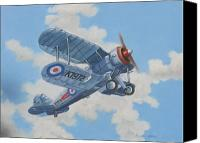 Raf Canvas Prints - Peacetime Gladiator Canvas Print by Murray McLeod