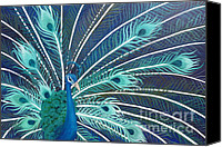 Estephy Sabin Figueroa Painting Canvas Prints - Peacock Canvas Print by Estephy Sabin Figueroa