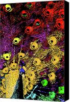 Fireworks Canvas Prints - Peacock Fireworks . R1936 Canvas Print by Wingsdomain Art and Photography