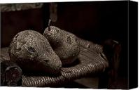 Decaying Canvas Prints - Pears on a Chair I Canvas Print by Tom Mc Nemar