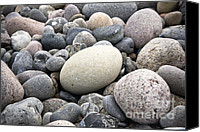 Pebbles Canvas Prints - Pebbles Canvas Print by Frank Tschakert
