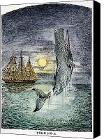 Whale Photo Canvas Prints - Pehe Nu-e: Moby Dick Canvas Print by Granger