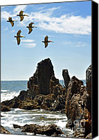 Tide Canvas Prints - Pelican Inspiration Canvas Print by Gwyn Newcombe
