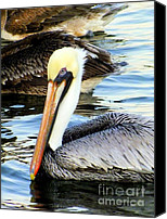 With Photo Canvas Prints - Pelican Pete Canvas Print by Karen Wiles