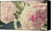 Pink Flower Canvas Prints - Peonies Canvas Print by Gigi Thibodeau