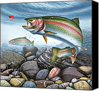 Rocks Painting Canvas Prints - Perfect Drift Rainbow Trout Canvas Print by JQ Licensing