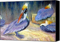 Scenic Pastels Canvas Prints - Peruvian Pelicans One  Pastel Canvas Print by Antonia Citrino