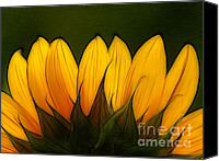 Yellow Flower Canvas Prints - Petales de Soleil - a12 Canvas Print by Variance Collections