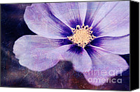 Purple Floral Canvas Prints - Petaline - 06bt04b Canvas Print by Variance Collections