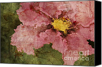 Texture Floral Canvas Prints - Petaline - ar01bt05 Canvas Print by Variance Collections