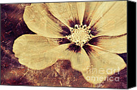 Textured Floral Canvas Prints - Petaline - t37d03a3 Canvas Print by Variance Collections