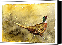 Pheasant Painting Canvas Prints - Pheasant Canvas Print by Eunice Olson