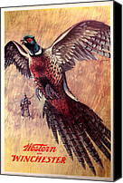Pheasant Painting Canvas Prints - Pheasant Hunter Canvas Print by Unknown