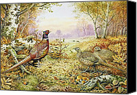 Pheasant Painting Canvas Prints - Pheasants in Woodland Canvas Print by Carl Donner