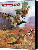 Winchester Canvas Prints - Pheasants On The Rise Canvas Print by Lynn Bogue Hunt