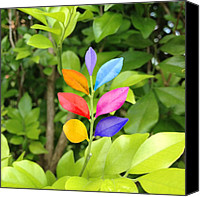 Bestoftheday Canvas Prints - #photooftheday #bestoftheday Canvas Print by Cameron Bentley