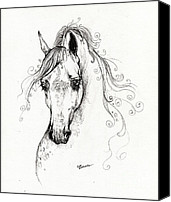 Arabian Horse Drawings Canvas Prints - Piaff polish arabian horse drawing Canvas Print by Angel  Tarantella