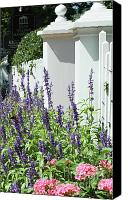 Country Decor Canvas Prints - Picket fence and purple flowers Canvas Print by adSpice Studios