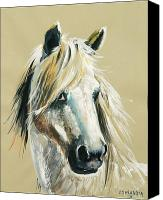 Horse Portrait  Canvas Prints - Pied rouge cheval camarguais Canvas Print by Josette SPIAGGIA