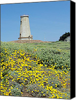 Cambria Photo Canvas Prints - Piedras Blancas Light Station Canvas Print by Jan Moore