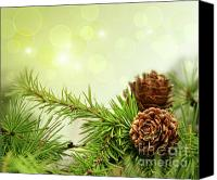 Celebrating Canvas Prints - Pine cones on branches with holiday background Canvas Print by Sandra Cunningham