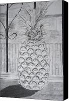 Pencil Drawing Canvas Prints - Pineapple in window Canvas Print by Jose Valeriano