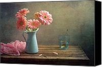 Israel Canvas Prints - Pink Gerberas In Blue Pitcher Jug Canvas Print by Copyright Anna Nemoy(Xaomena)