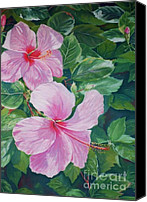 Seascape Pastels Canvas Prints - Pink Hibiscus Canvas Print by John Clark