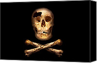Steal Canvas Prints - Pirate - Pirate Flag - Im a mighty pirate Canvas Print by Mike Savad