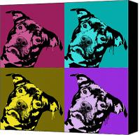 Pitbull Canvas Prints - Pit Face Canvas Print by Dean Russo