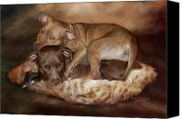 The Art Of Carol Cavalaris Canvas Prints - Pitbulls - The Softer Side Canvas Print by Carol Cavalaris
