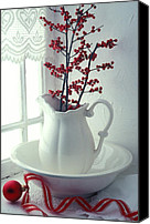 Red Berries Canvas Prints - Pitcher with red berries  Canvas Print by Garry Gay